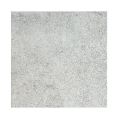 Quarz 18 x 36 Porcelain Field Tile in Gris