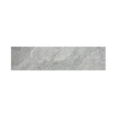 Earth 23 x 4 Bullnose Tile Trim in Gray