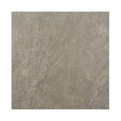 Earth Rectified 16 x 44 Porcelain Field Tile in Cafe