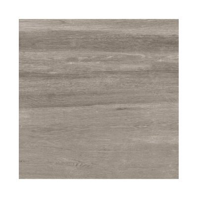 Emotion 8 x 48 Porcelain Wood Look/Field Tile in Grigio