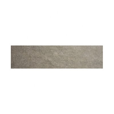Earth 23 x 4 Bullnose Tile Trim in Cafe