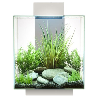 12 Gallon Edge Aquarium Kit