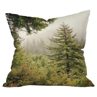 Into the Mist Outdoor Throw Pillow Size: 18 H x 18 W x 4 D