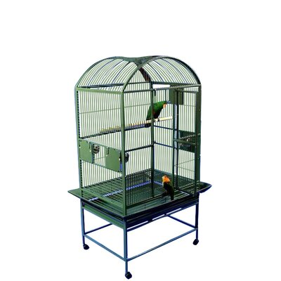 Gunner Large Dome Top Bird Cage Color: Green