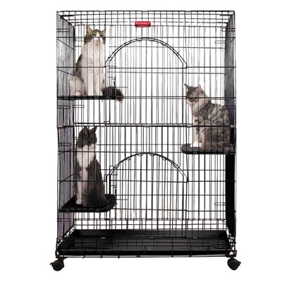 Foldable Cat Crate Color: Black