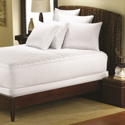 Cotton Top 15 Polyester Mattress Pad Size: Twin XL