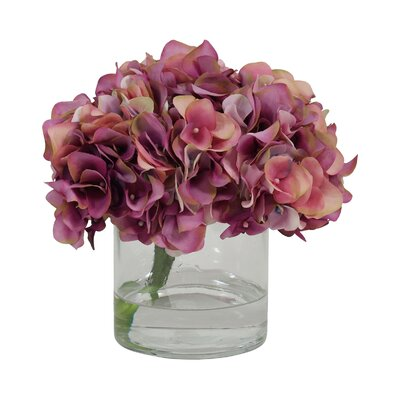 Hydrangea in Glass Water Vase Color: Raspberry