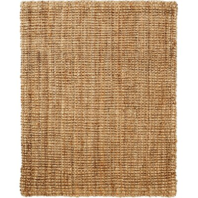 Jason Brown Rug Size: 9 x 12