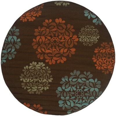 Newfield Hand-Woven Brown/Blue Indoor/Outdoor Area Rug Rug Size: Round 710