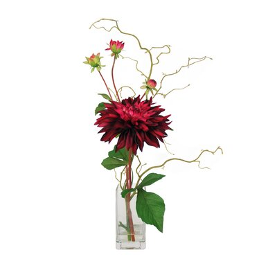 Garden Dahlia with Curly Willow