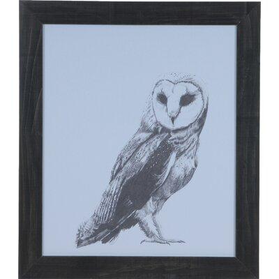 Owl Framed Painting Print CVA3557