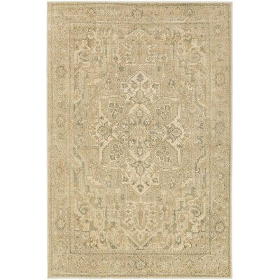 Redding Beige/Gray Area Rug Rug Size: Rectangle 67 x 96