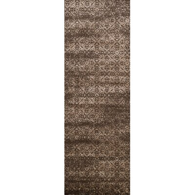 Kissel Brown Area Rug Rug Size: Runner 26 x 77