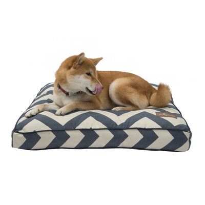 Spellbound Pet Pillow Size: Medium (28 W x 36 D)