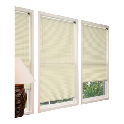 Vinyl Mini Blinds in Ivory Size: 46W x 64L