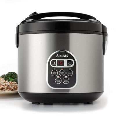 20-Cup Stainless Steel Digital Slow Cooker, Food Steamer and Rice Cooker ARC-150SB