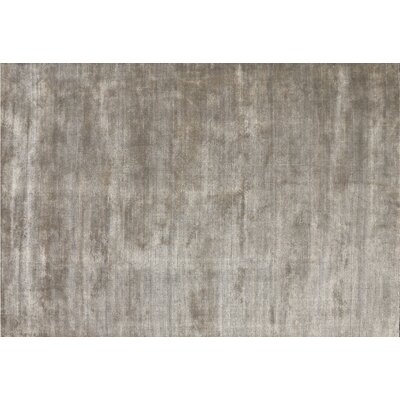 Sana Hand-Knotted Beige Area Rug Rug Size: 57 x 79