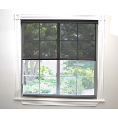 Interior Motorized Roller Shade Size: 48 W x 72 L x 3 D, Color: Dark Brown
