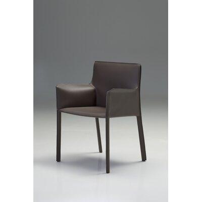 Fleur Armchair Upholstery: Mink