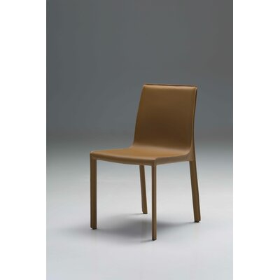 Fleur Dining Chair (Set of 2) Finish: Caramel