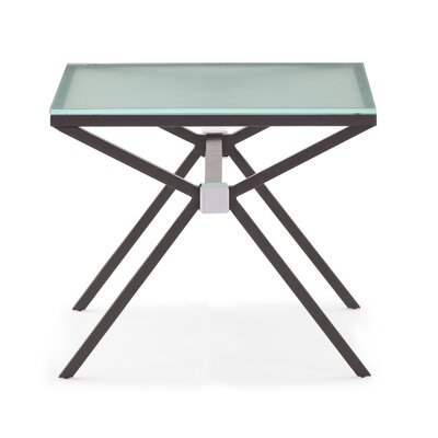 Credit for Xert End Table Finish: Gray...