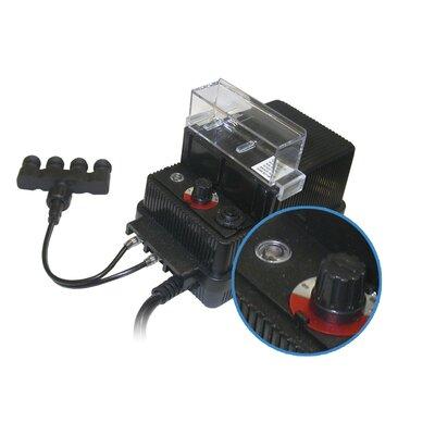 4-Light Transformer