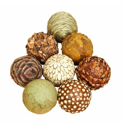 Autumnal 8 Piece Natural Ball Sculpture Set Size: 5