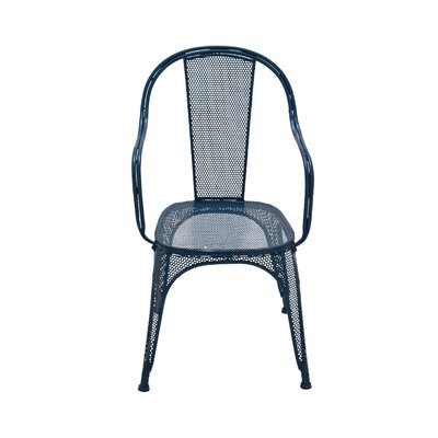 Arm Chair Frame Finish: Blue