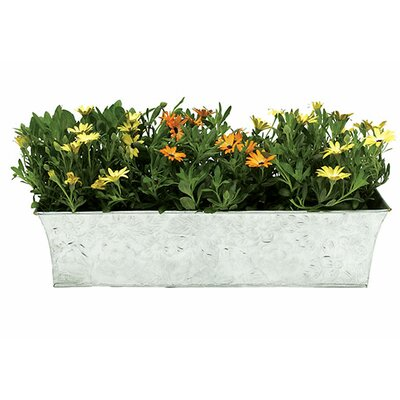 Metal Rail Planter