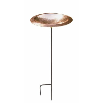 Lustrous Rimmed Birdbath with Stand