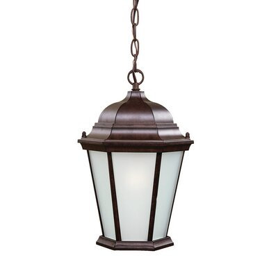 Richmond 1-Light Outdoor Hanging Lantern Finish: Burled Walnut