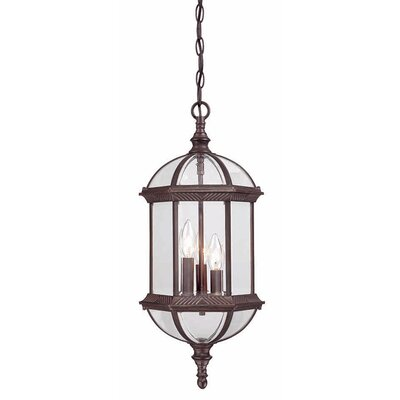 Dover 3-Light Outdoor Hanging Lantern Finish: Burled Walnut