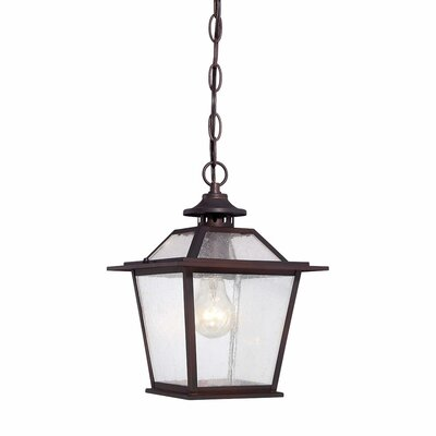 Salem 1-Light Outdoor Hanging Lantern Finish: Architectural Bronze