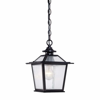 Salem 1-Light Outdoor Hanging Lantern Finish: Matte Black