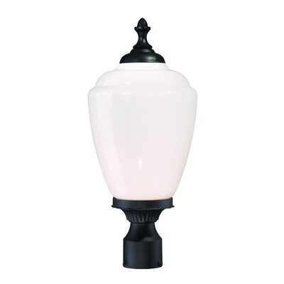 Acorn Outdoor 1-Light Lantern Head Shade Type: Opal