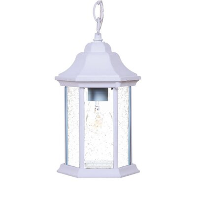 Madison 1-Light Outdoor Hanging Lantern