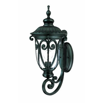 Naples 1-Light Outdoor Sconce Finish: Matte Black