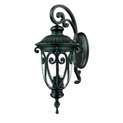 Naples 1-Light Outdoor Wall Lantern Finish: Matte Black