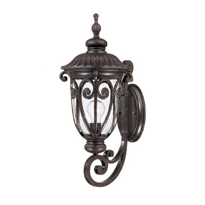 Naples 1-Light Outdoor Sconce Finish: Marbleized Mahogany