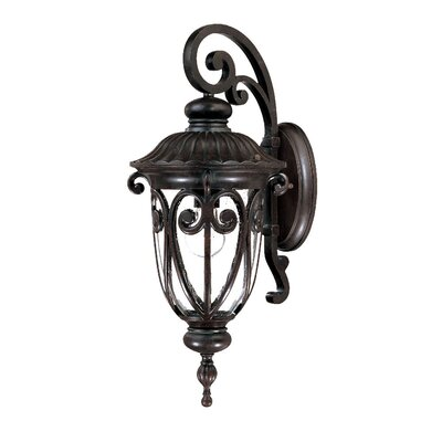 Naples 1-Light Outdoor Wall Lantern Finish: Marbleized Mahogany
