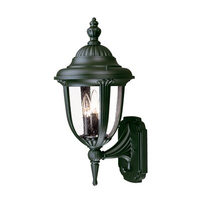 Monterey 3-Light Outdoor Sconce Finish: Matte Black