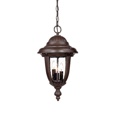 Monterey 3-Light Outdoor Hanging Lantern Finish: Burled Walnut