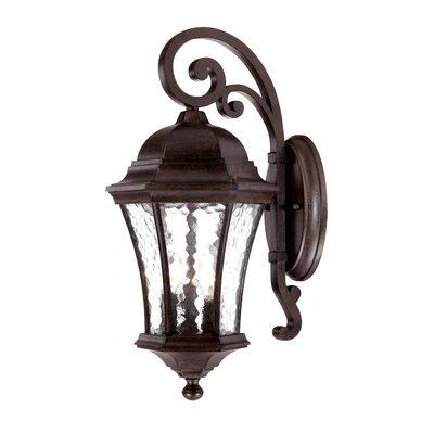 Waverly 3-Light Outdoor Wall Lantern Finish: Black Coral