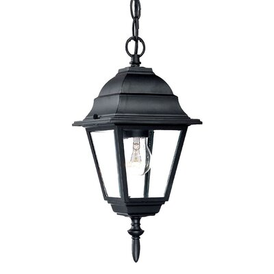 Builder's Choice 1-Light Outdoor Hanging Lantern Finish: Matte Black