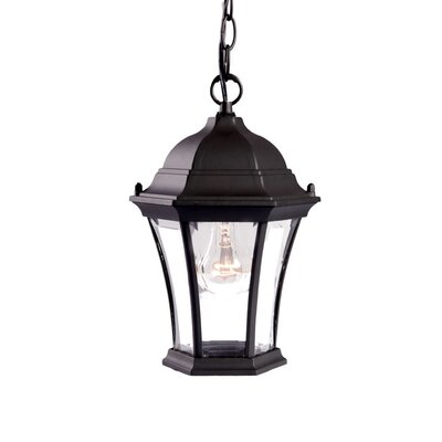 Brynmawr 1-Light Outdoor Hanging Lantern Finish: Matte Black
