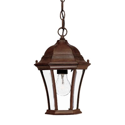 Brynmawr 1-Light Outdoor Hanging Lantern Finish: Burled Walnut