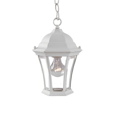 Brynmawr 1-Light Outdoor Hanging Lantern Finish: Textured White