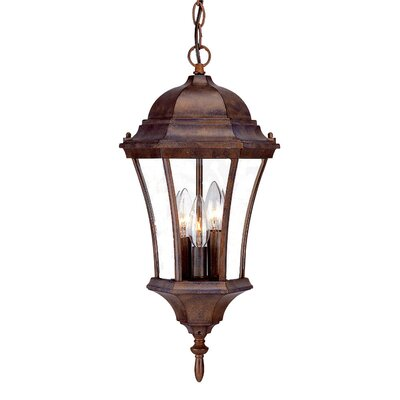 Brynmawr 3-Light Outdoor Hanging Lantern Finish: Burled Walnut