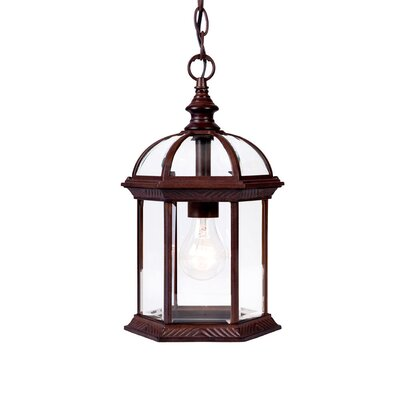 Dover 1-Light Outdoor Hanging Lantern Finish: Burled Walnut