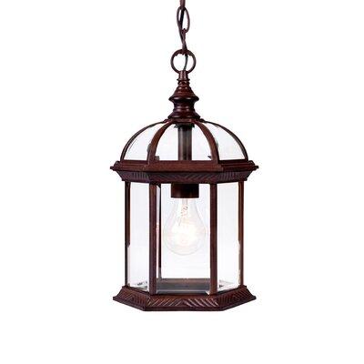 Dover 1-Light Outdoor Hanging Lantern Finish: Burled Walnut